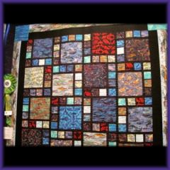 Best New Quilter